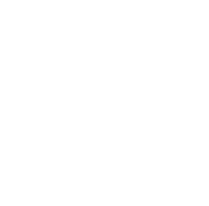 Frontline Consulting